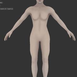 bodyfrnttex_presss