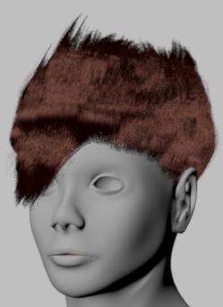 hairfront