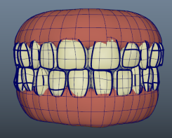 retopoteeth