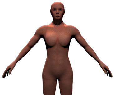 skinfront